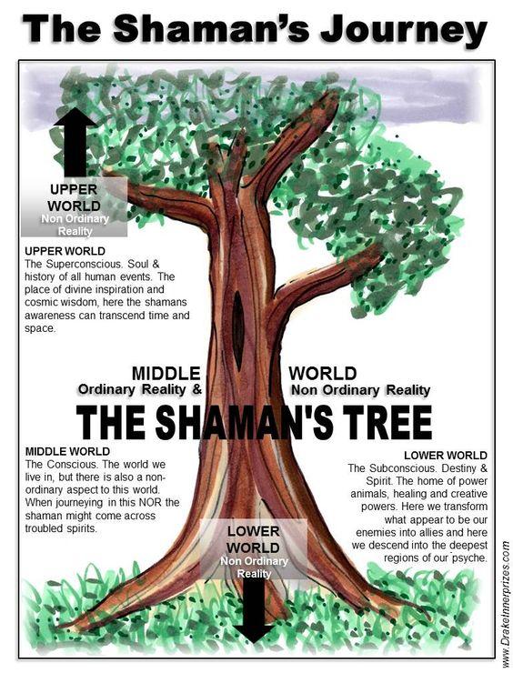 shaman tree of life